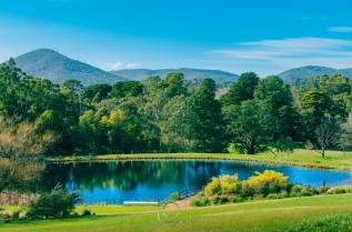 Healesville Serenity